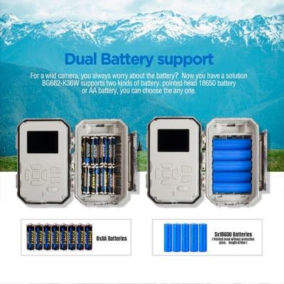 bolymedia BG636 батарейки
