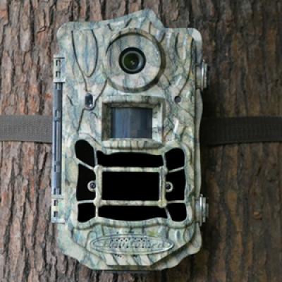 Фотоловушка SG968D-12mHD