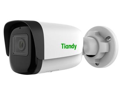 Tiandy TC-C33WN